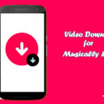 Video Downloader for Musically & Tik Tok APK